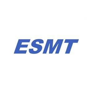 ESMT 300x300 Recovered