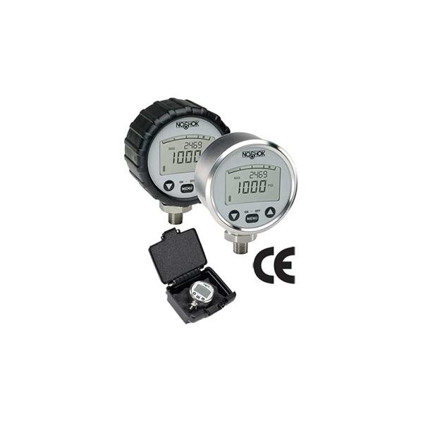 Series Digital Pressure Gauges
